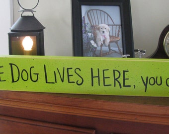 The Dog Lives Here You Don't-----Dog Lover handpainted sign