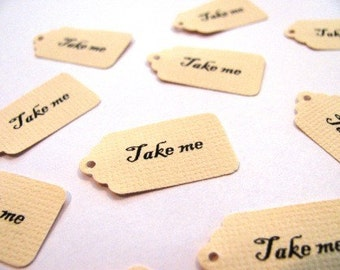 Mini TAKE ME tags - Alice in Wonderland inspired tags- 100 count