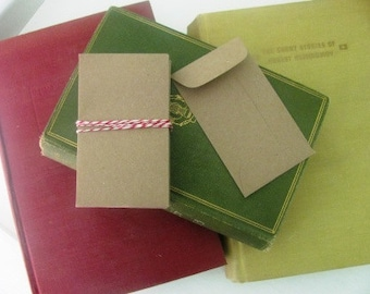 100 Seed packet envelopes- BROWN KRAFT Recycled paper