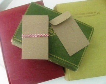 10 Seed Packet Envelopes- Kraft Paper