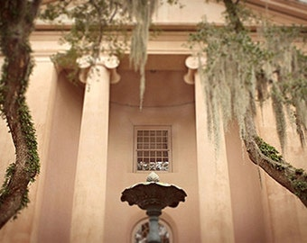 College of Charleston Photography South Carolina 8x12