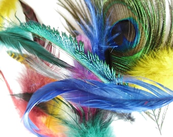 Feather Mix (over 100  pieces) - peacock, rooster, guinea, goose biots etc.