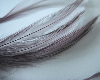 "Three inch strip of VIOLET/AMETHYST Strung Rooster HACKLE  feathers - individual feather about 4-5"" long"