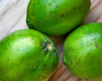 Bright Green Limes Photograph
