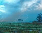 12x36 - Foggy Morning Pasture - Panorama - Landscape - Fine Art Photography mounted on rigid gatorfoam with Mount Block