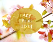 custom size print, any photo as 11x14, nature photography, fine art photography, nurser wall art, carnival photos, cottage chic decor