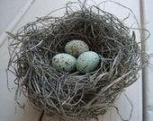 Shabby Chic Handmade Bird Nest with Pale Blue Green Crow's Eggs - AMarigoldLife