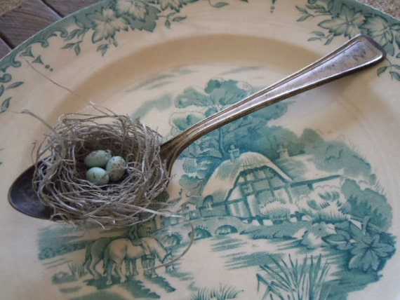 Romantic Bird Nest Silver Spoon with Crow's Eggs