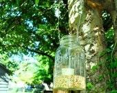 Hanging Mason Jar Upcycle Lantern