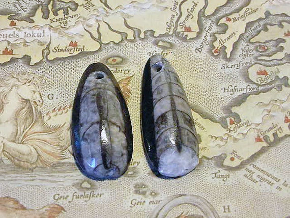 RESERVED FOR GETCAE Pair- 2 pieces Fossilized Orthoceras Drilled Focal Beads, Cabachon Ancient Squid Morocco (no29,30)