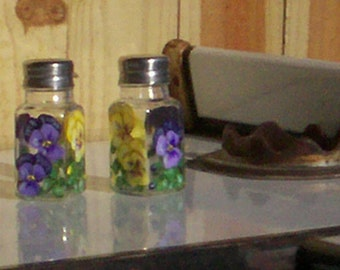 Glass Salt and Pepper Shaker GIFT CERTIFICATE Hand-painted on Glass by Lisa Hayward Salt & Pepper Shakers