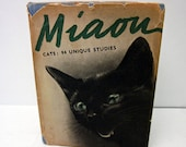Miaou - Cats: 94 Unique Studies - 1950
