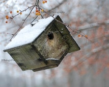 """Landscape Photography, Cute Little Wren Bird House in Snow with Red Berries, Winter Cozy Home, """"Home Sweet Home"""", Fine Art Print"""