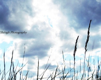 "Nature Photography, Landscape photo, Laying in the Grass at Sunset, Clouds in Evening Sky, ""A Wish"", Fine Art Print"