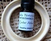 Glazed Ceramic Light Bulb Ring - Scent Using Essential Oils