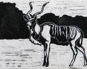 Greater Kudu - Original Linocut Print