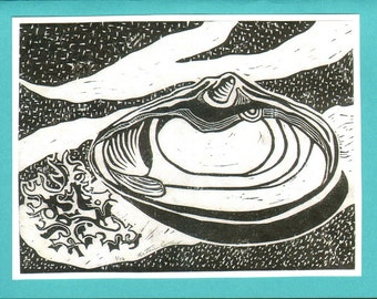 5 Turquoise Shell Notecards