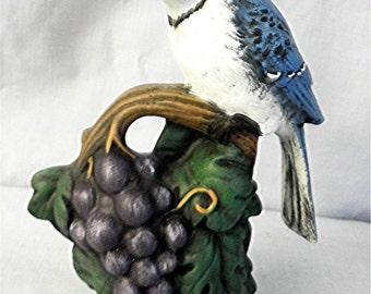 Bluejay on a Branch