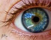 Other Photography - Blue Eye Close Up - Fine Art Print 8x10