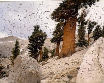 4 x 6 Hand Cut Puzzle with 68 Pieces Ready to Ship