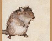 Cute Gerbil Art Print