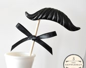Mustache on a Stick - The Gentleman - CHOOSE A COLOR