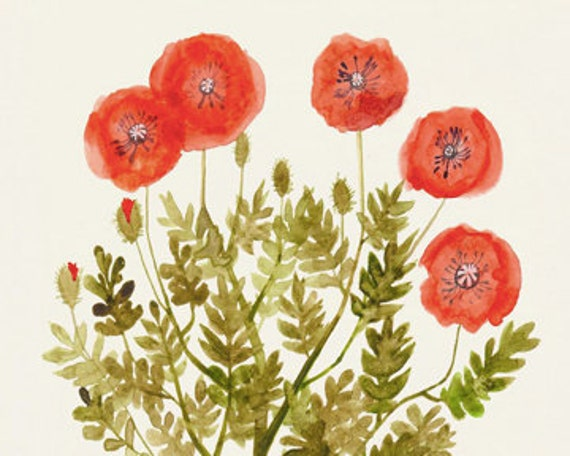 "Poppies - Original Watercolor and Ink Illustration - 9""x12"" - Flower Wall Art"