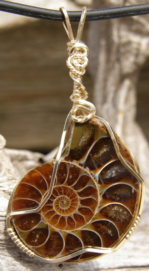 AMMONITE FOSSIL STONE PENDANT GOLD WIRE WRAPPED ON CORD
