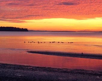 Birch Bay Sunset and Ducks Original Photograph