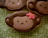 Mod Monkey Cookie Party Favors Little Girl Birthday Pink Flower