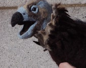 MONK VULTURE PUPPET  -- Needle Felted Wool -- with plastic eyes -- blue, brown, tan, cream, grey, and  black -- aka Cinereous Vulture
