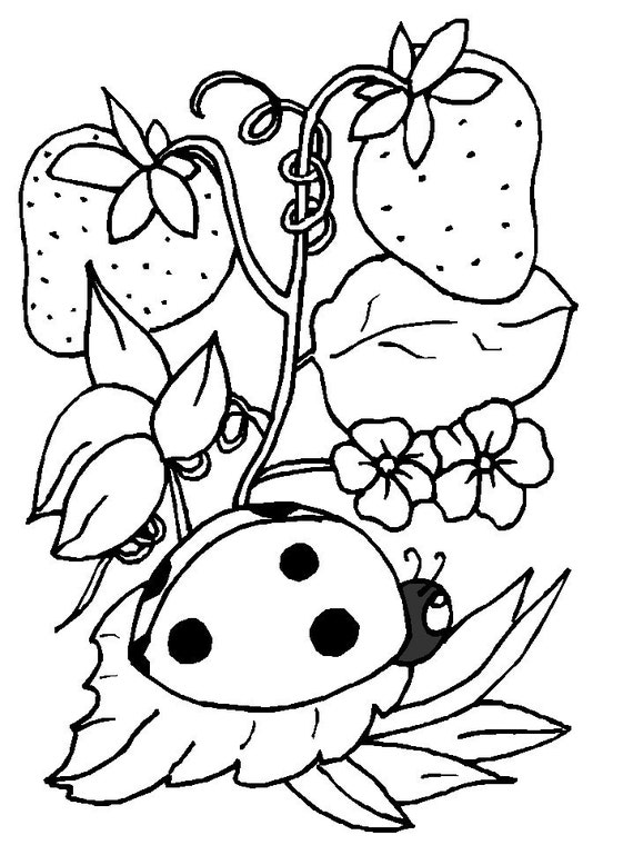 Five Insect Downloadable, Printable Coloring Pages for Kids