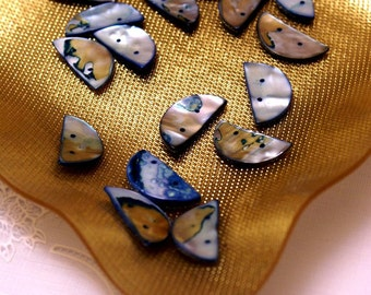 Mother Pearl shells Blue and Silver