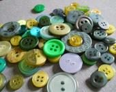 65pc. Seaweed button destash