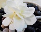 Creamy Ivory Felt Blossom Headband