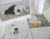 Old English Sheepdog (OES) Multi-pack Notecards (12 count)