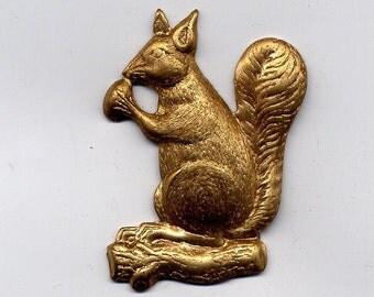 6 Squirrel Brass Metal Stampings