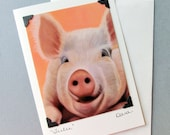 Pig Card - Funny Pig Art - Postcard Greeting Card Combination - Bright Animal Art - 10% Benefits Animal Rescue