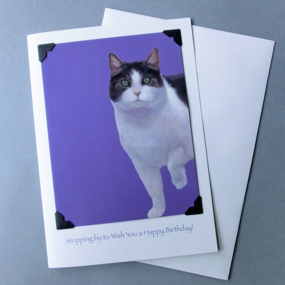 Cat Birthday Card - Kitten Birthday Card -Shelter Kitty Birthday Card - Postcard Greeting Card Combination - 10% Benefits Animal Rescue