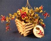 Hanging fuchsia plant