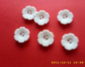 "small white flower buttons 5/8""  6 buttons new"