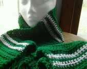 Slytherin Crocheted House Scarf