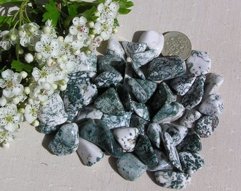10 Tree Agate Crystal Tumblestones, Green Crystals, White Crystals, Crystal Collection, Chakra Crystals, Gemini, Meditation Stone, Aura