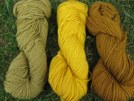 3 skeins, plant dyed, superwash wool, fingering weight yarn