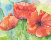 Poppies Watercolor Greeting Card
