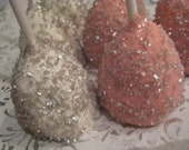 24 Silver Sugared Brownie Bite Pops in Pastel Colors