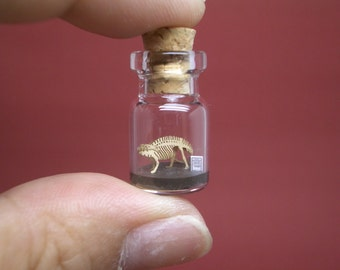 Apatosaurus / Brontosaurus in a tiny bottle