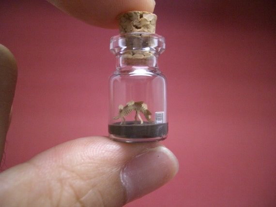 Stegosaurus in a tiny bottle