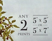Any TWO prints at 5x5 or 5x7 - Fine Art Photo Prints