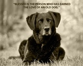 Dog Photography, Senior Dog, Black Lab, Quote Print, Dog Art, Duotone Image